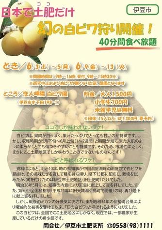 20170518白びわ.jpg
