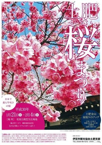 20171230土肥桜まつり.jpg
