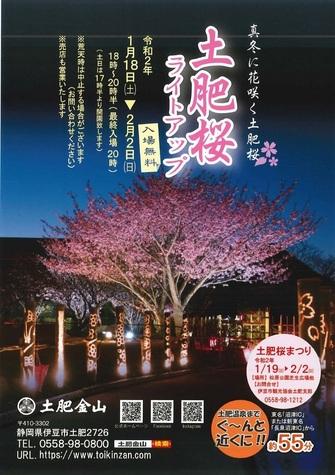 toizakura-01.jpg